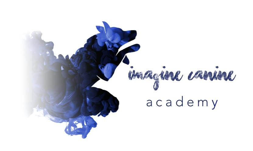 Imagine Canine Academy